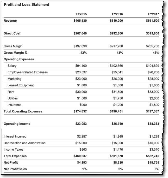 profits and loss statement template